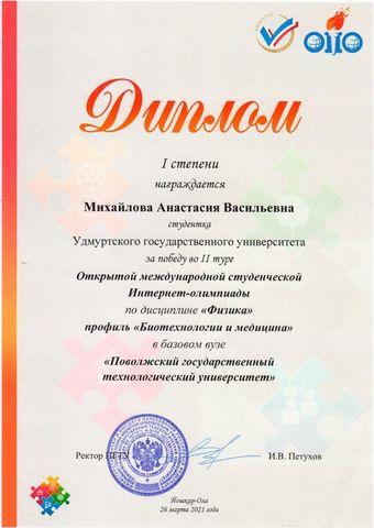 Диплом Михайлова
